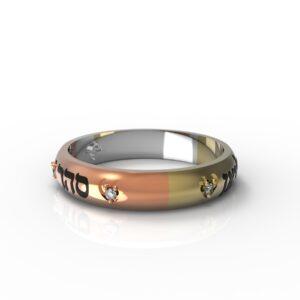 טבעות שמות-טבעת זהב עם שמות הילדים צבעים משתלבים