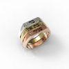 <h3>טבעת חותם לאישה </h3>
